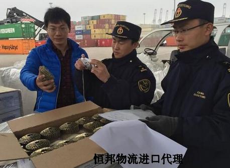 韩国电子进口商检查验